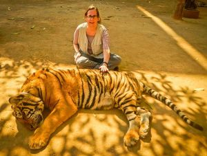 Lady and the Tiger 3