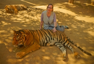 Rosie and third tiger
