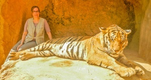 Rosie and Waking Tiger-800px