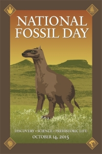 National Fossil Day 2015